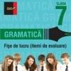 GRAMATICA FISE DE LUCRU PENTRU CLASA A VII-A