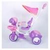 Tricicleta 919 Mov - Ares